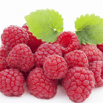 Picture of Raspberry Extract